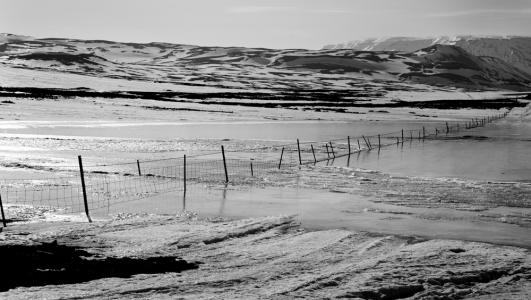 Fence, Iceland, 2016
