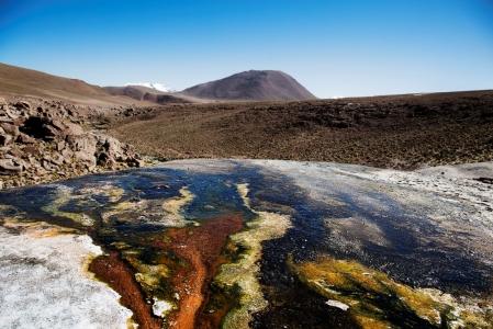 Sulpur (Patagonia & Atacama)